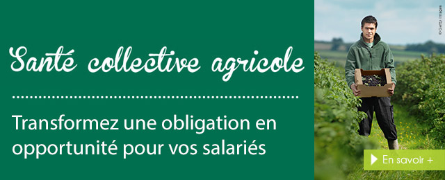 Assurance Collective Agricole